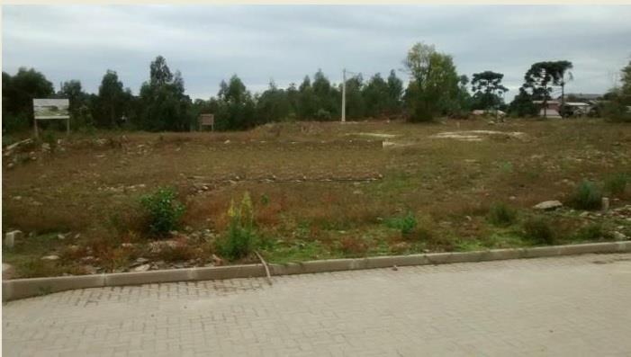 Terreno à venda em Vila Dante, Canela - RS