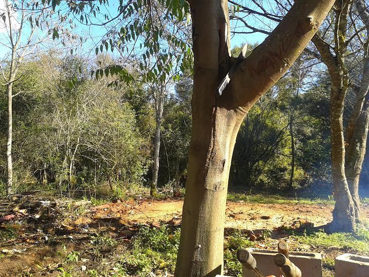 Sítio em Castelo Branco, Gravataí - RS