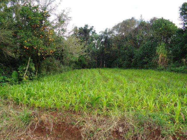 Terreno à venda em Centro, Arroio Do Meio - RS