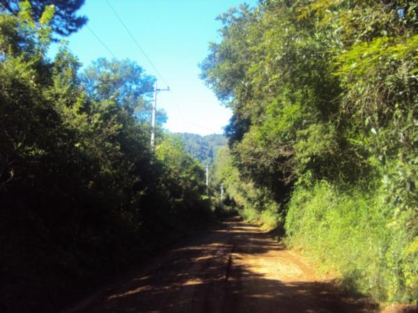 Sítio à venda em Condomínio Laje De Pedra, Canela - RS