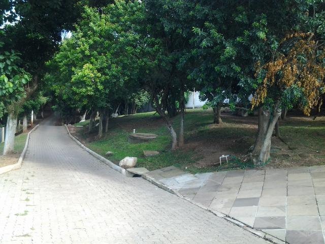 Terreno em Cascata, Porto Alegre - RS