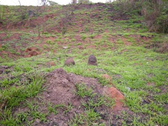 Terreno à Venda - Jardim Esplanada II