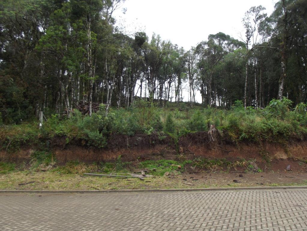 Terreno à venda em Carniel, Gramado - RS