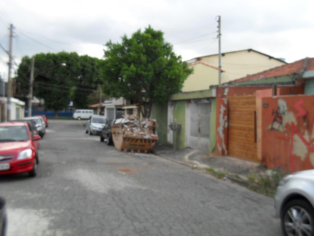 Terreno  residencial à venda, Vila Floresta, Santo André.