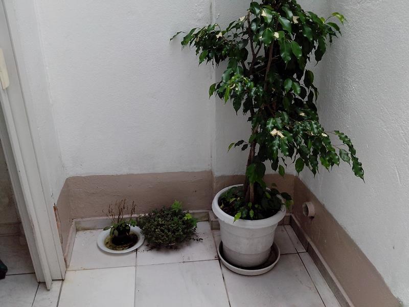 Salão em Ipiranga, São Paulo - SP
