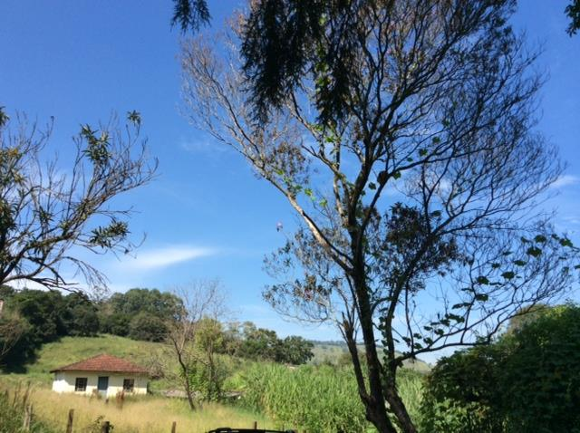 Sítio rural à venda, Areal, Pinhalzinho.