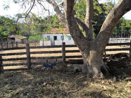 Fazenda rural à venda, Setor Bueno, Goiânia. de Facilitari.'