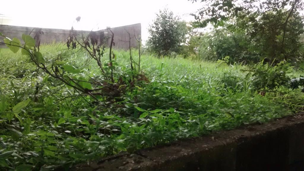 Terreno à Venda - Adalgisa
