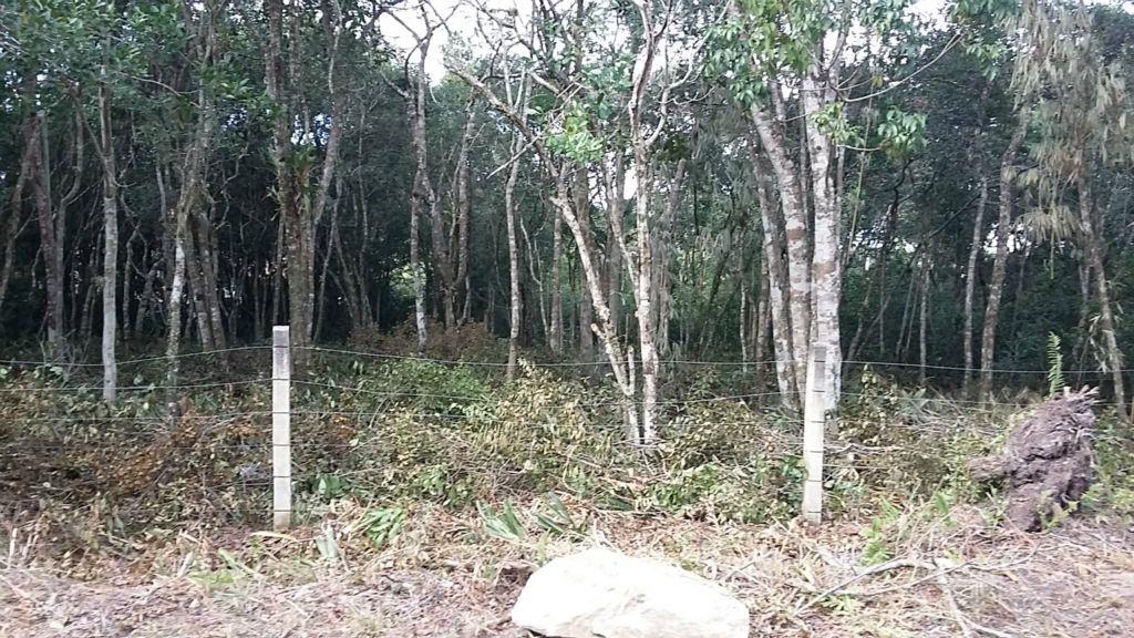 Terreno em Canto Grande - Bombinhas - 100 mts da Praia