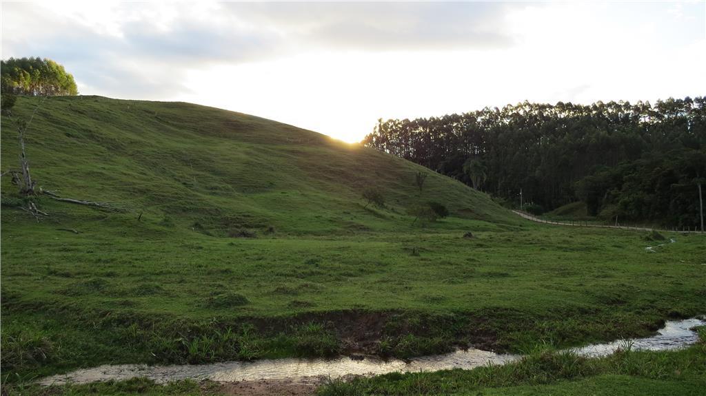 Sítio com com 15 hectares á venda, 150000 m² por R$ 500.000 - Oliveira - Tijucas/SC
