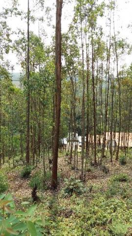 Terreno à venda em Condomínio Capital Ville, Cajamar - SP