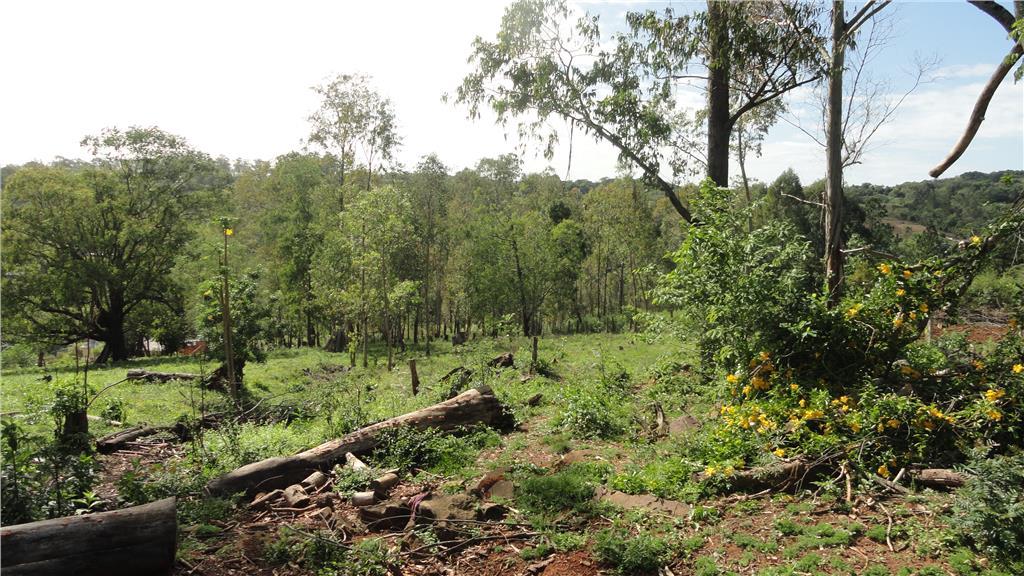 Sítio em Zona Rural, Taquara - RS