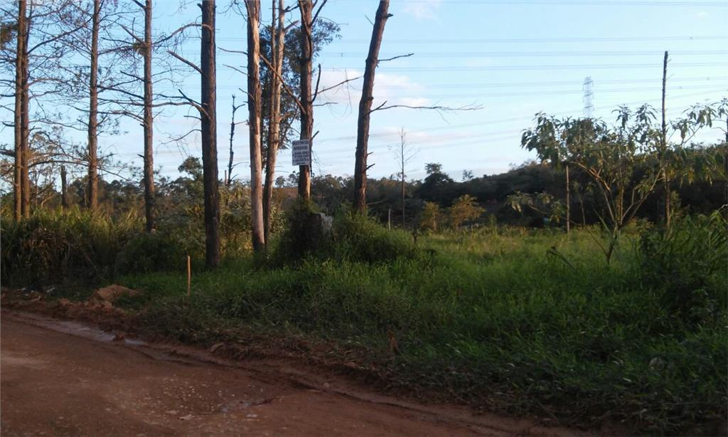 Terreno  residencial à venda, Vila Nova Bonsucesso, Guarulho