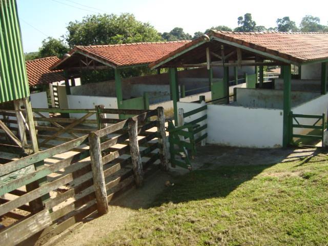 Fazenda  rural à venda, Vila Luiz Antônio, Itapetininga.