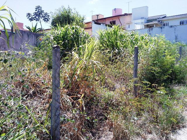 Terreno, Cidade Universitária, Campinas (TE0425) - Foto 4