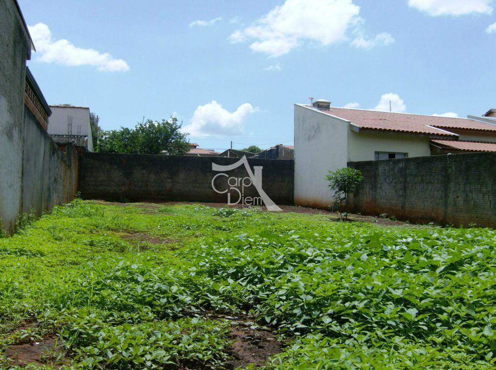 Carpe Diem Imóveis - Terreno, Campinas (TE0453) - Foto 2