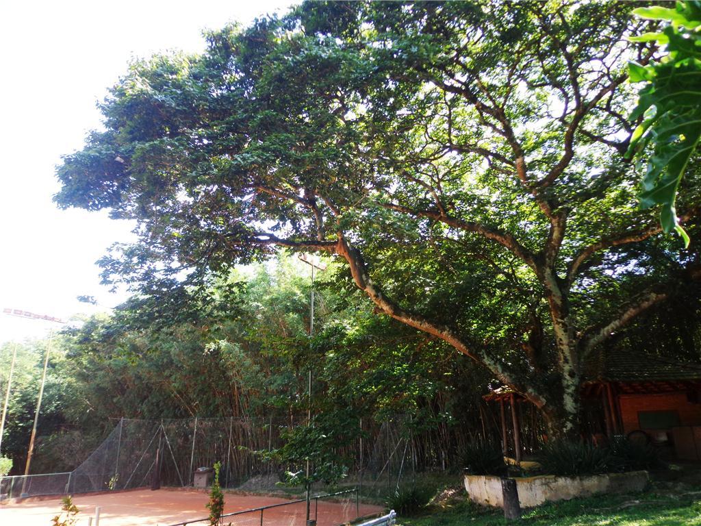 Carpe Diem Imóveis - Terreno, Barão Geraldo - Foto 2