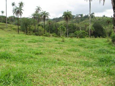Terreno, Condomínio Terras do Cancioneiro, Paulinia (TE0296)