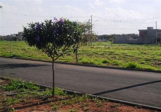 Terreno, Condomínio Campos do Conde, Paulinia (TE0436) - Foto 6