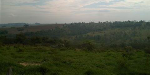 Carpe Diem Imóveis - Terreno, Residencial São Luís