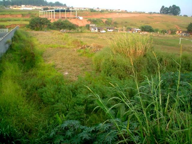 Terreno, Jardim São Luiz, Campinas (AR0594) - Foto 4
