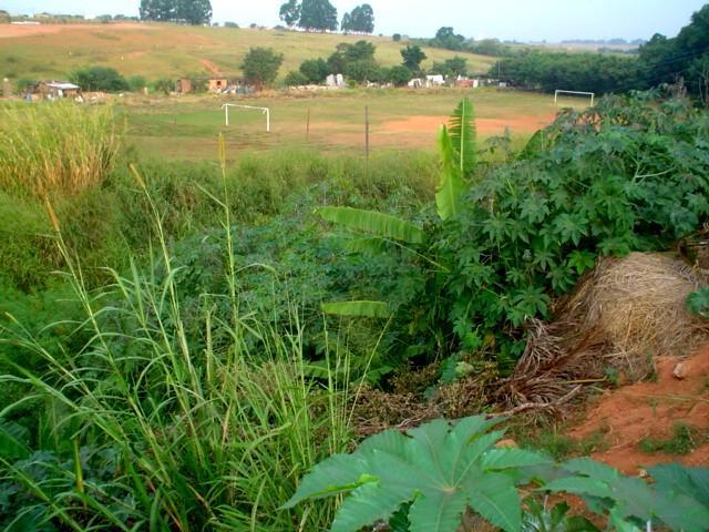 Terreno, Jardim São Luiz, Campinas (AR0594) - Foto 5