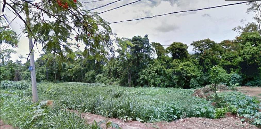 Terreno, Guara, Campinas (TE0327) - Foto 7