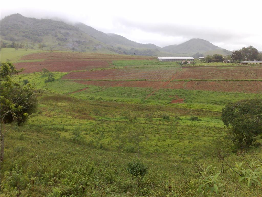 Carpe Diem Imóveis - Terreno, Ouros, Paraísopolis - Foto 4