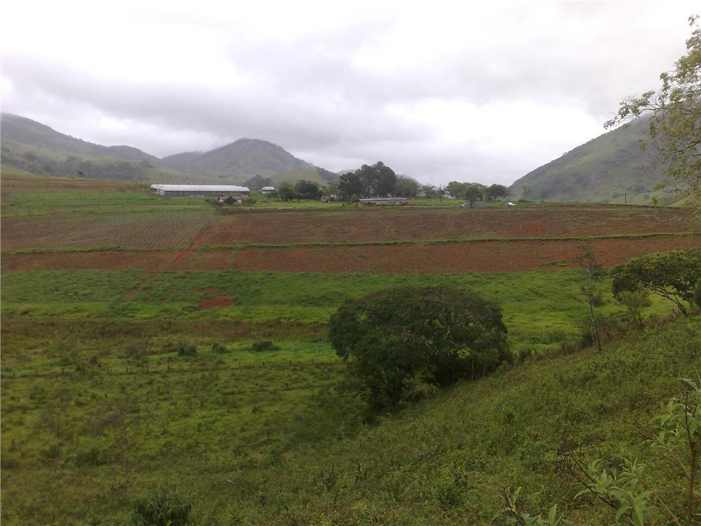 Carpe Diem Imóveis - Terreno, Ouros, Paraísopolis - Foto 5