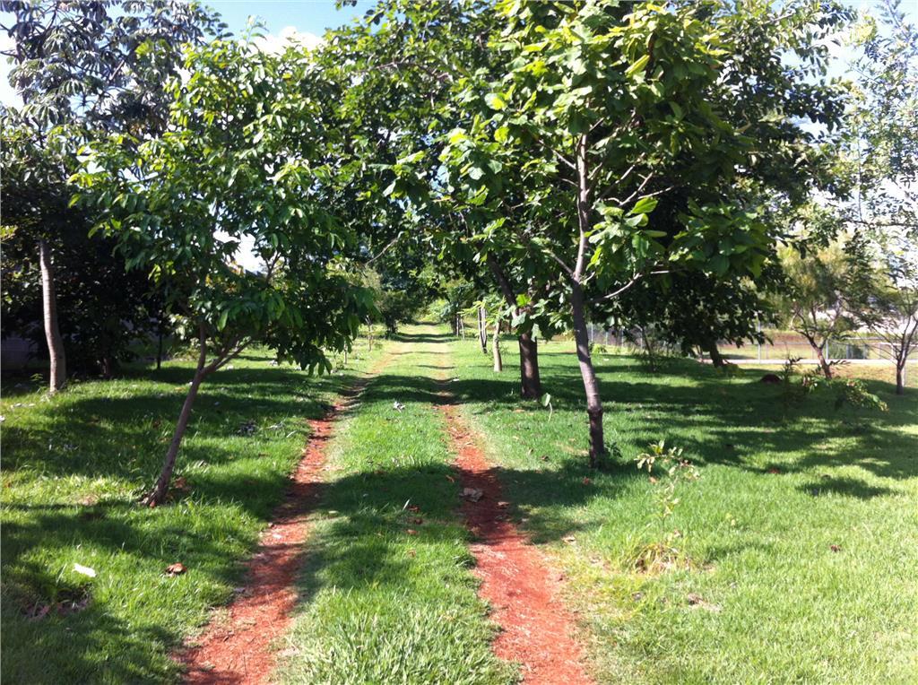 Terreno, Condomínio Vila Franca, Paulinia (TE0507) - Foto 4