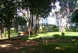 Carpe Diem Imóveis - Apto 2 Dorm, Campinas - Foto 7