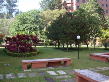 Apto 4 Dorm, Jardim Marajoara, São Paulo (AP12096) - Foto 6