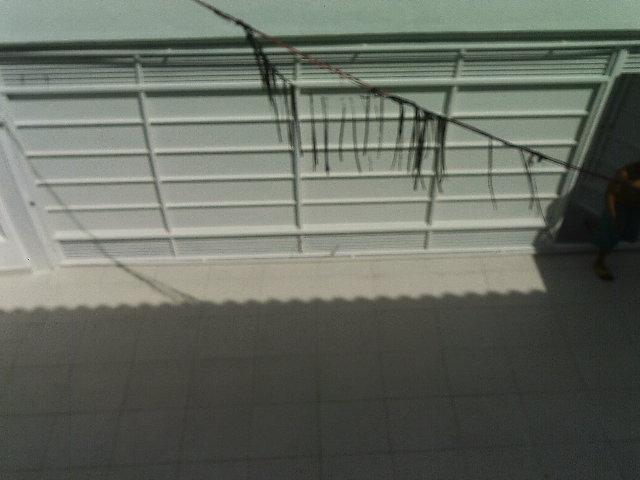 Casa 3 Dorm, Campo Grande, São Paulo (SO1038) - Foto 6