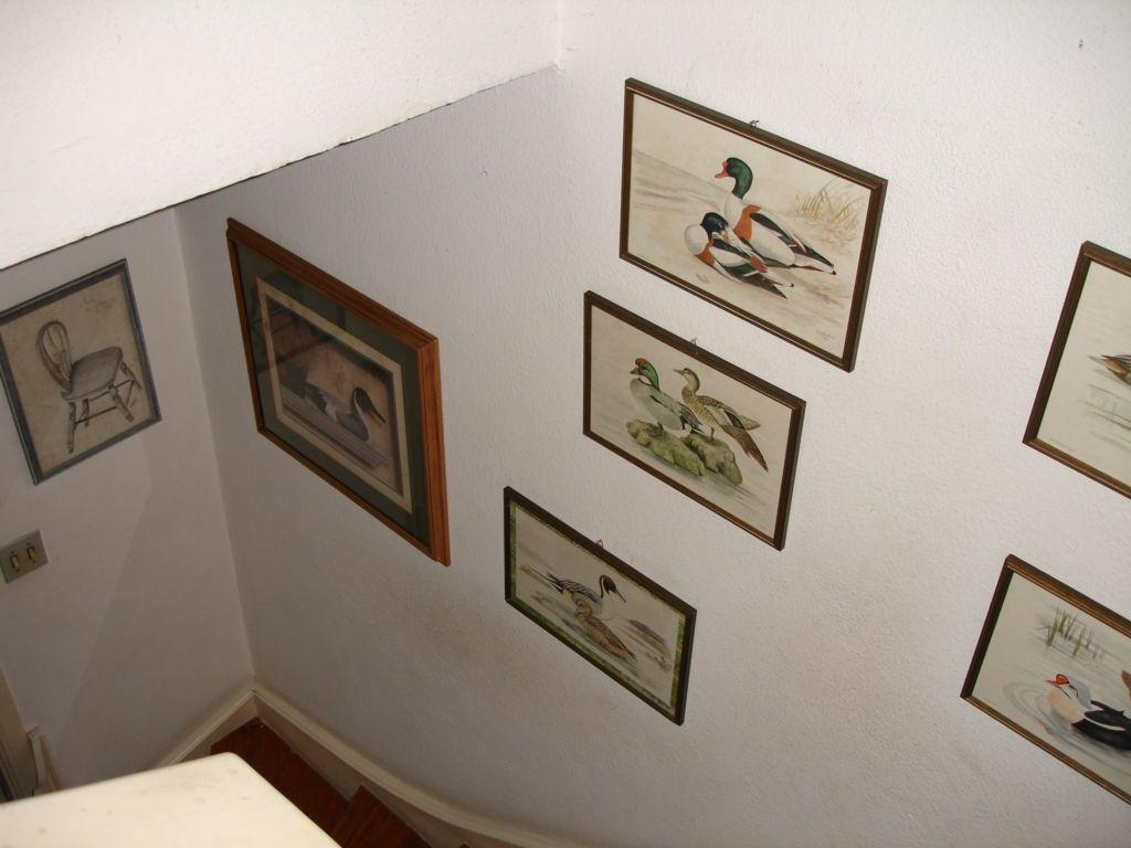 Total Imóveis - Casa 3 Dorm, Alto da Boa Vista - Foto 2