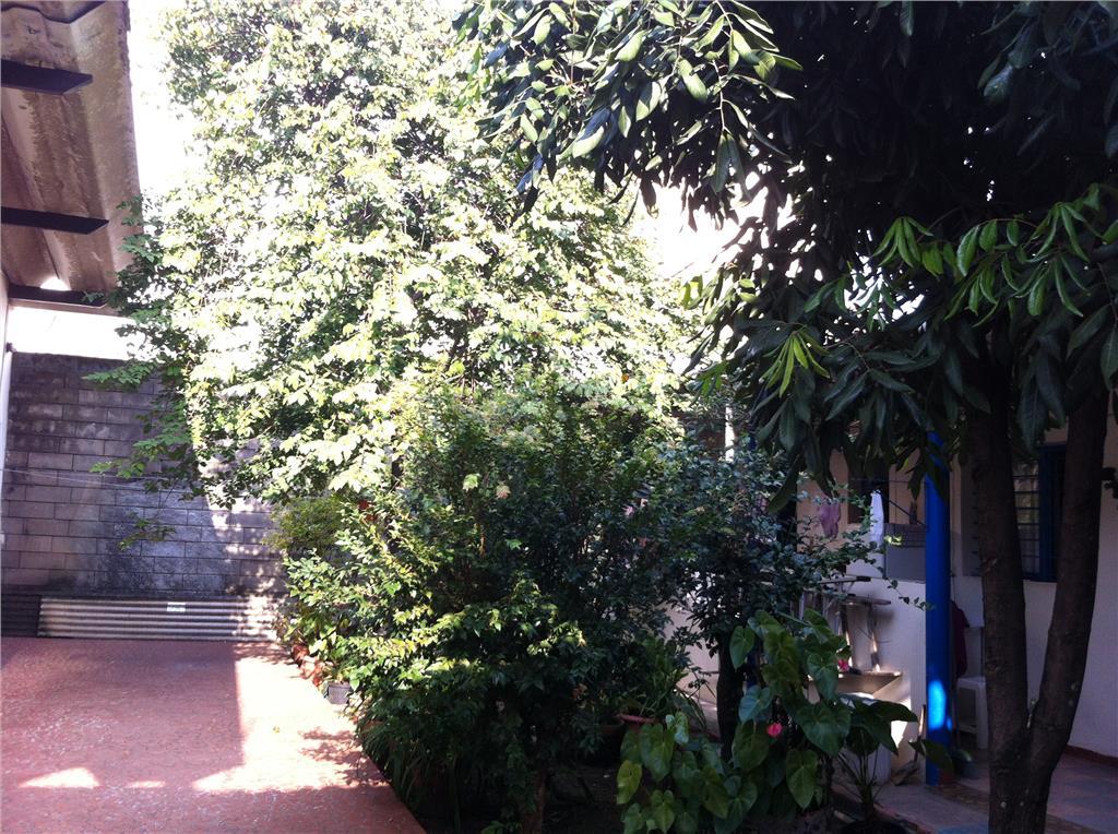 Casa 5 Dorm, Campo Belo, São Paulo (CA1125) - Foto 16