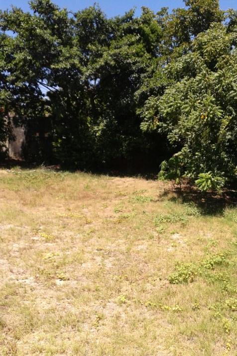 Century 21 Estilo Imóveis - Terreno, Jardim Maily - Foto 4