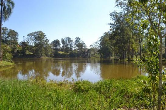 Terreno, Quinta dos Angicos, Cotia (TE0229) - Foto 4