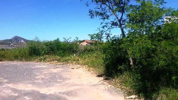 Terreno, Nova São Pedro, São Pedro da Aldeia (TE0148) - Foto 2