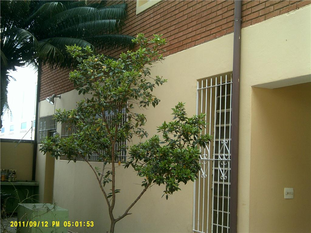 Casa 3 Dorm, Vila Cacilda, Jundiaí (304748)