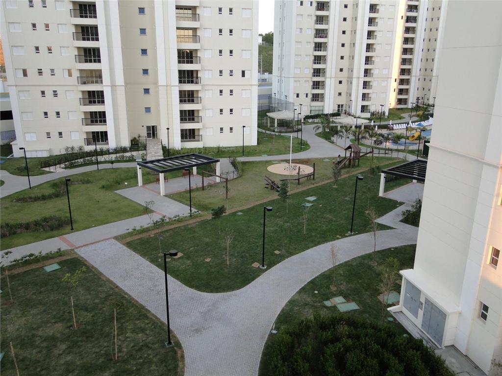 Jequitibas - Foto 5