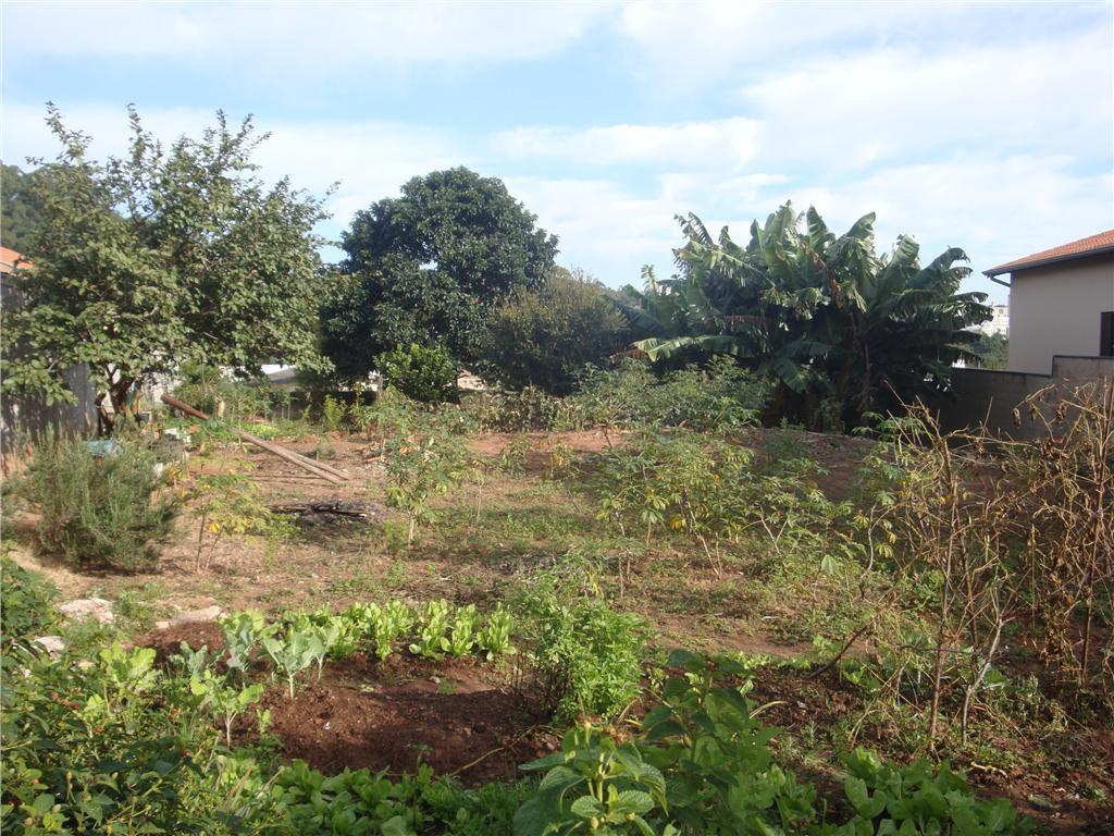 Terreno, Horto Santo Antonio, Jundiaí (304781) - Foto 2