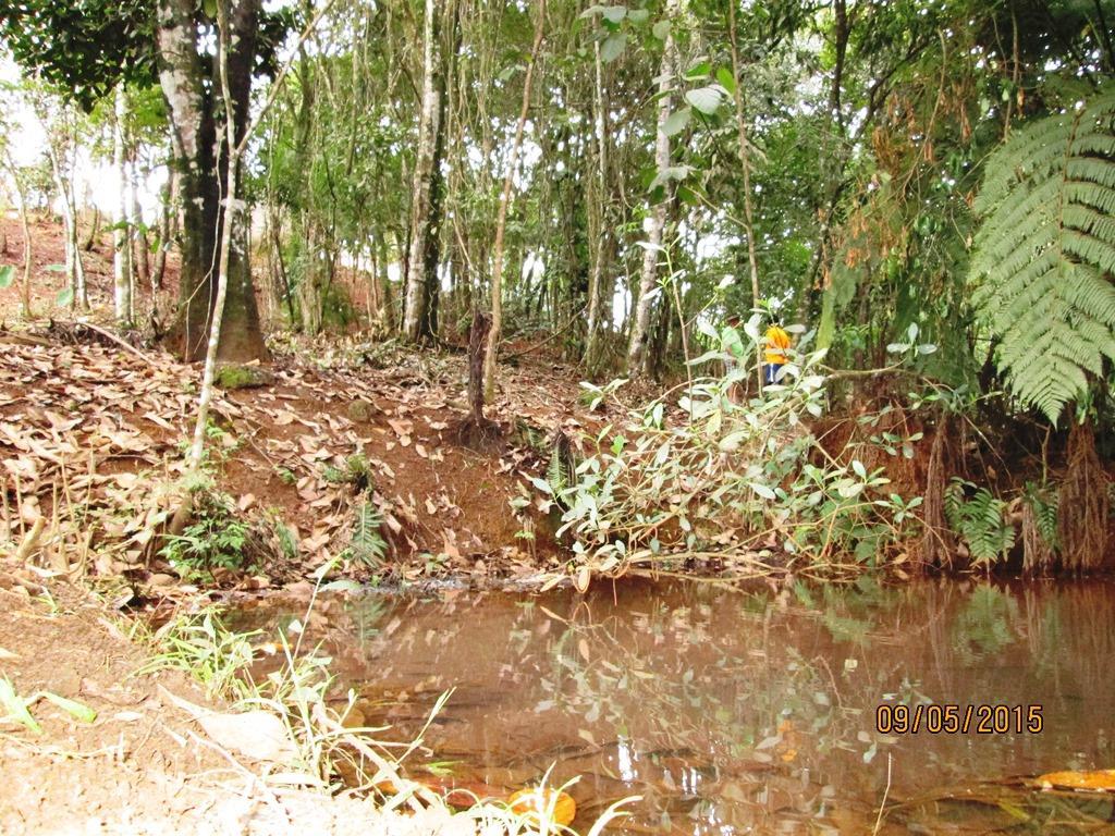 Terreno residencial à venda, Pires, Congonhas.