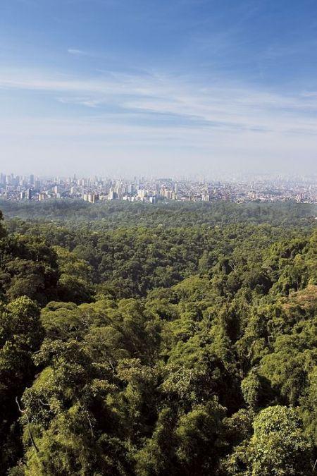 Terreno Residencial à venda, Tucuruvi, São Paulo-T
