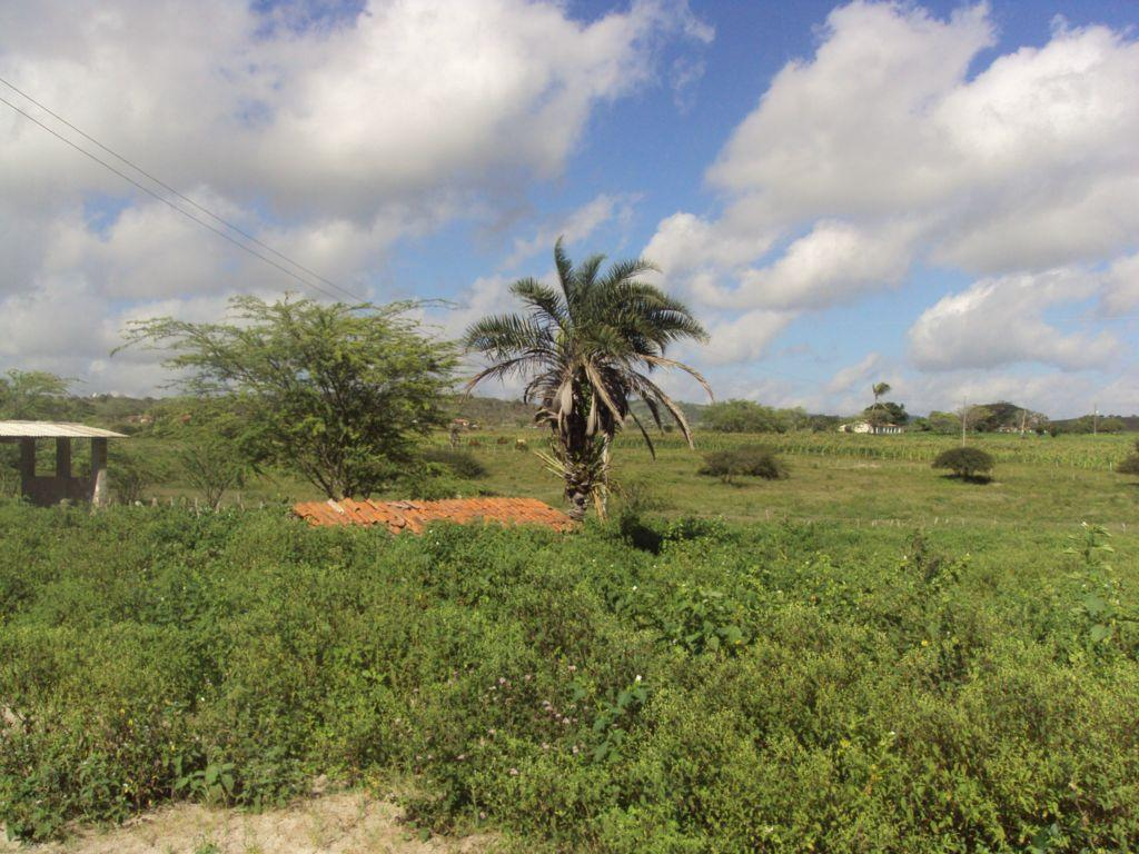 Sítio rural à venda, Heliópolis, Garanhuns.
