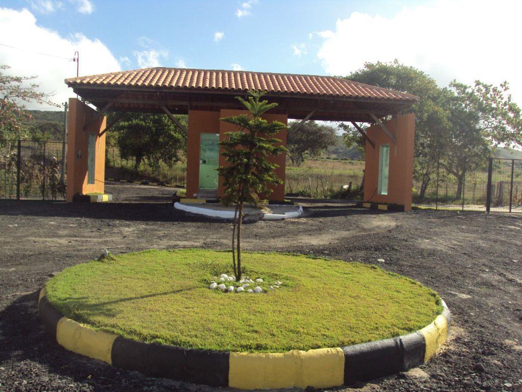 Terreno residencial à venda, Novo Horizonte, São João.