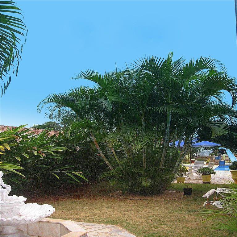 Casa 3 Dorm, Residencial Parque Rio das Pedras, Campinas (CA0225) - Foto 19