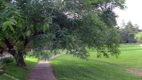 Pista para caminhada com 5 km de extensão no Patrimônio do Carmo, São Roque, SP