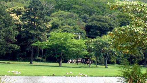 No Patrimônio do Carmo é permitida as cavalgadas nas suas áreas internas pelos proprietários.