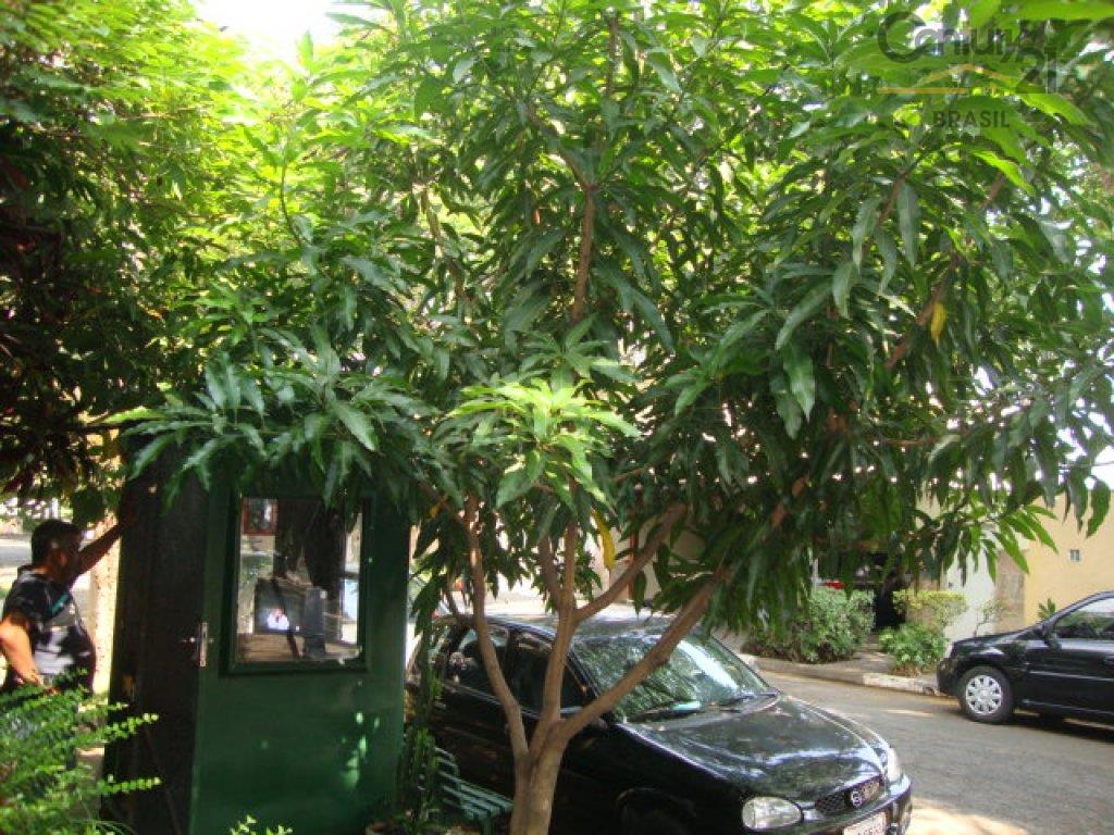 Sobrado Residencial à venda, Brooklin Paulista, São Paulo - SO0216