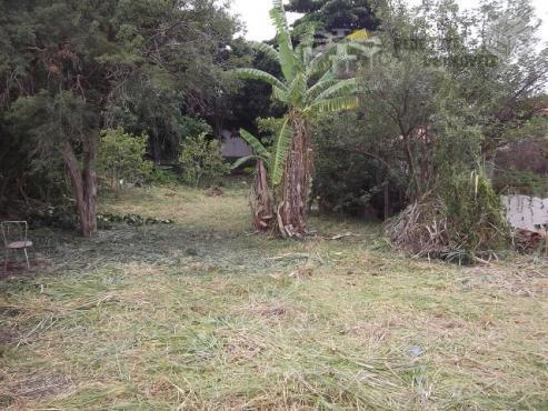Excelente Oportunidade de Investimento - Terreno Amplo Ideal para vila no Centro de Campinas